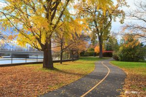 Fall Colours in Ottawa - Pix on Trips