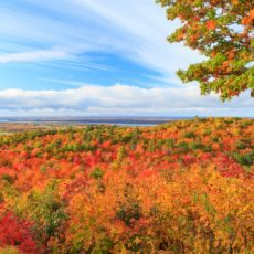 Fall colors - Pix on Trips