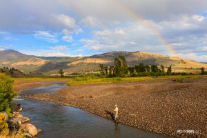 Fishing in Yellowstone National Park - Pix on Trips