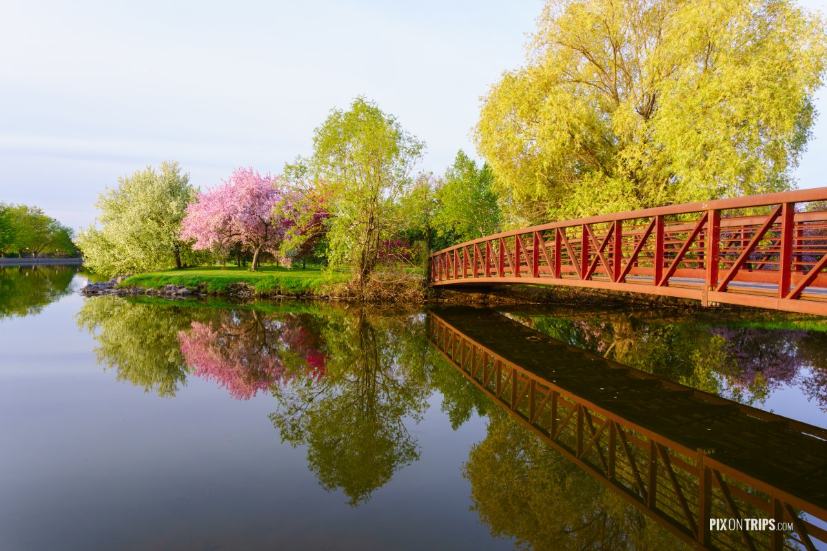 A park with red bridge and pink blossom tree - Pix on Trips