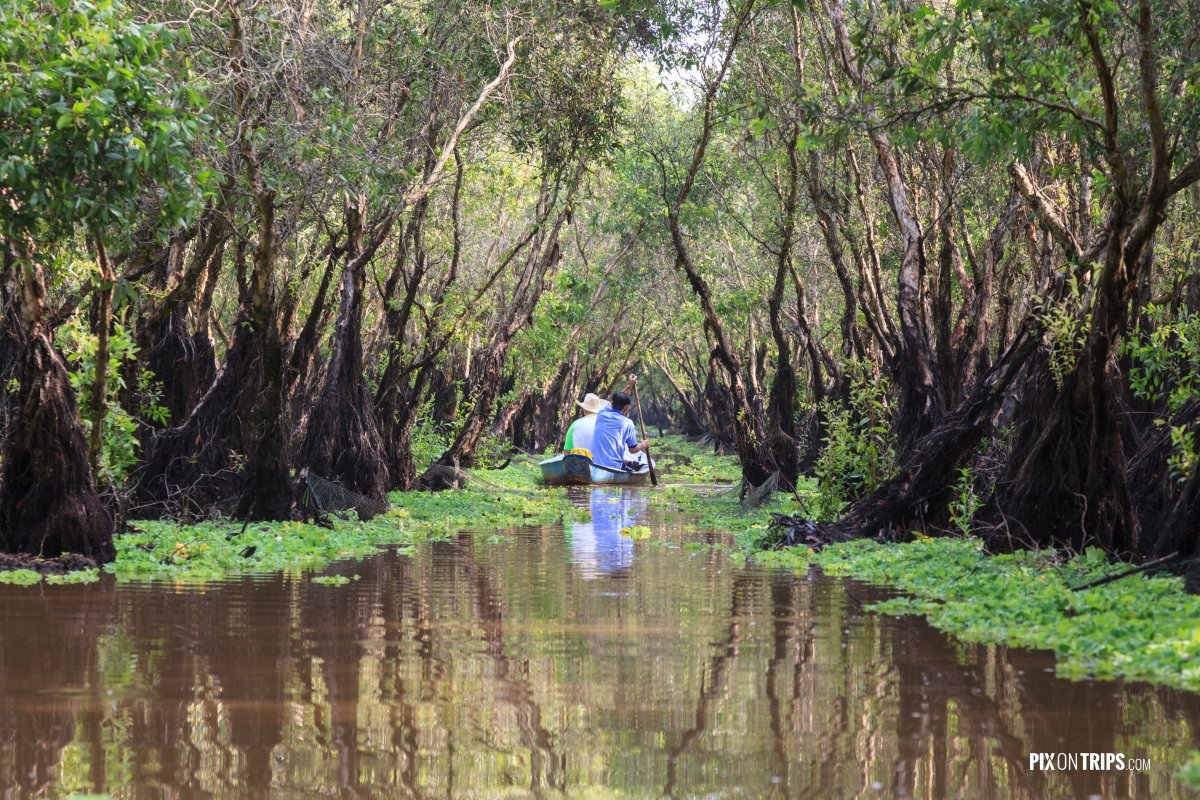 Paddling in waters of Tra Su Bird Sanctuary, Vietnam - Pix On Trips