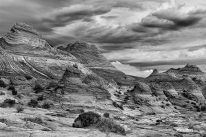 Stone desert in B&W - Pix on Trips