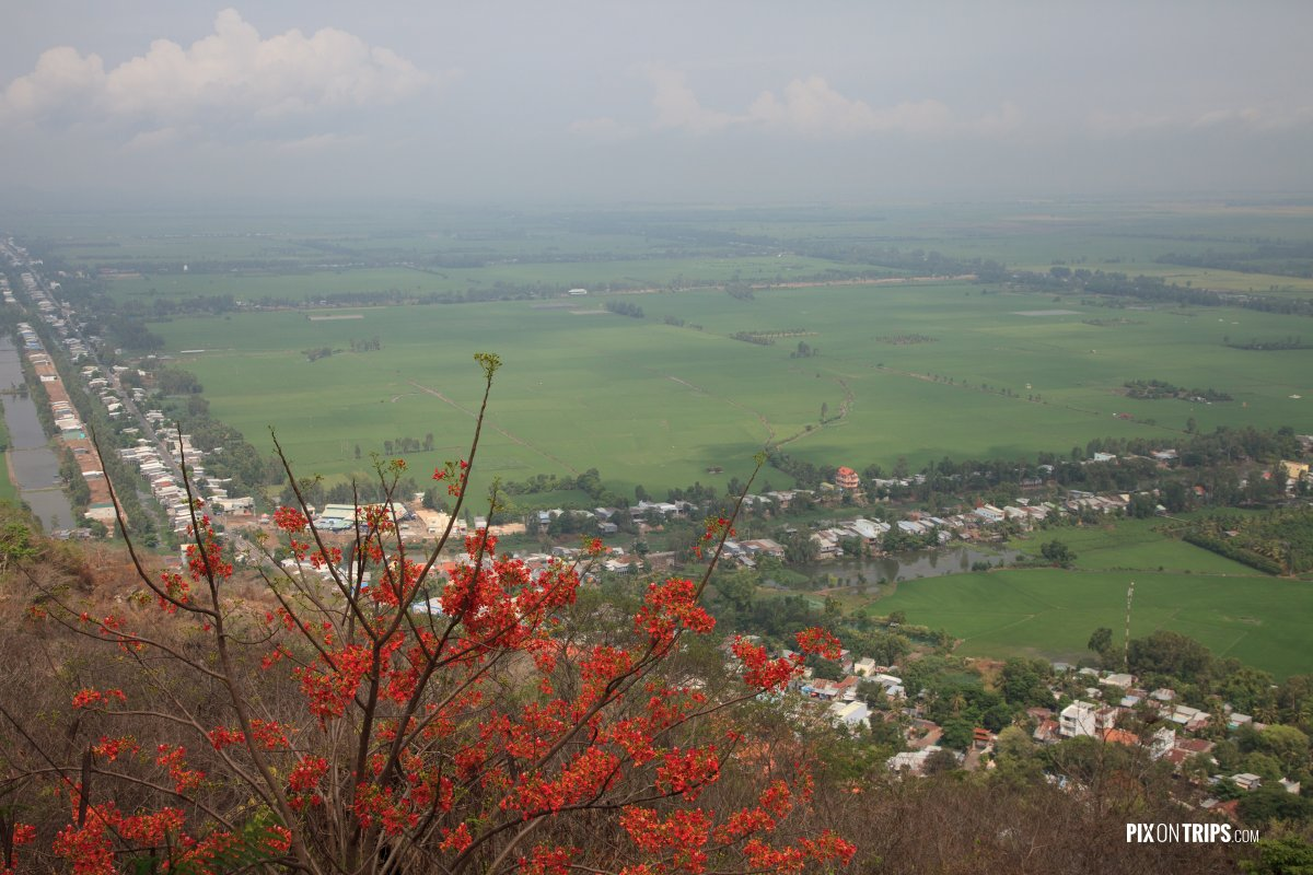 View of rice fields from Sam Mountain, Vietnam - Pix on Trips