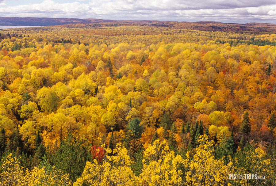 View of fall colours from the Lookout Trail in Algonquin Park