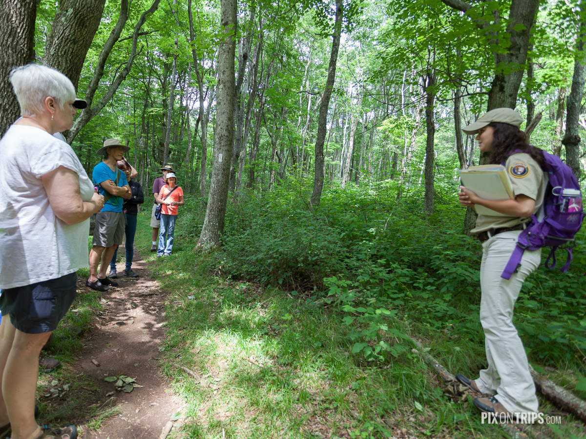 Guided hiking tour offered by the Shenandoah National Park - Pix on Trips