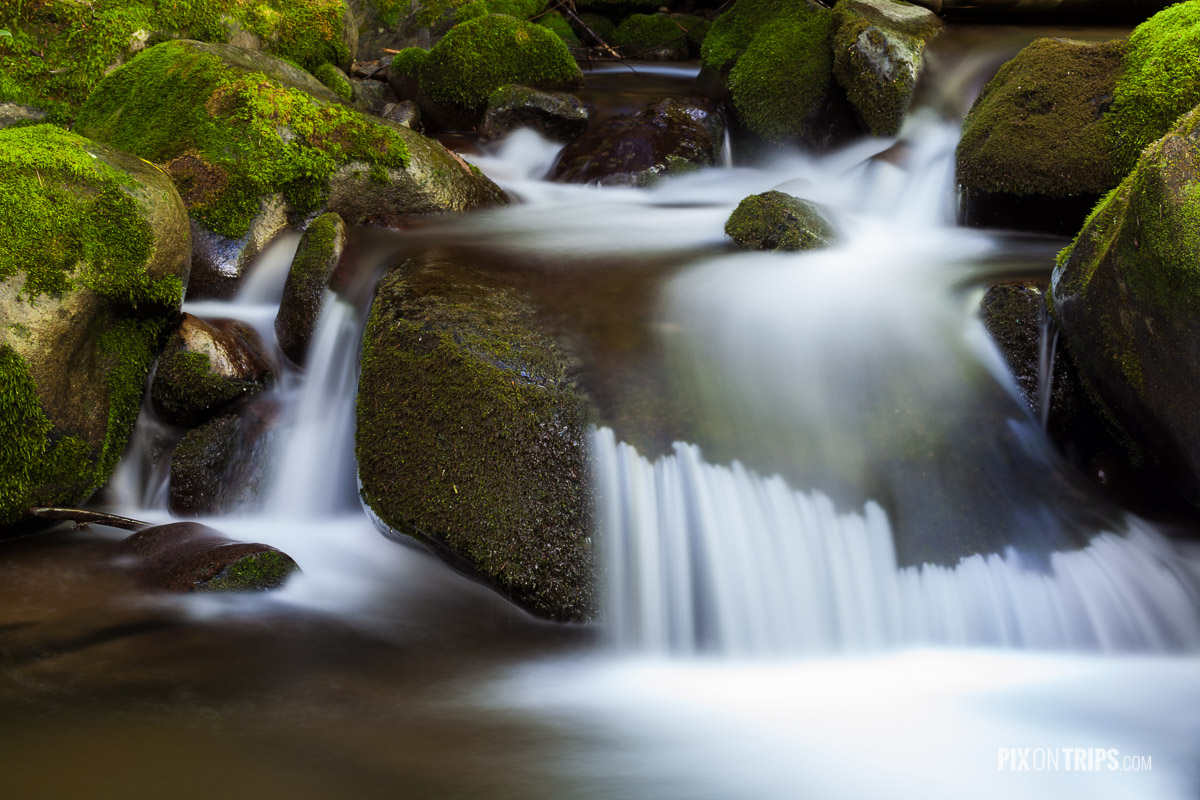 A creek in the Great Smoky Mountain National Park, NC, USA