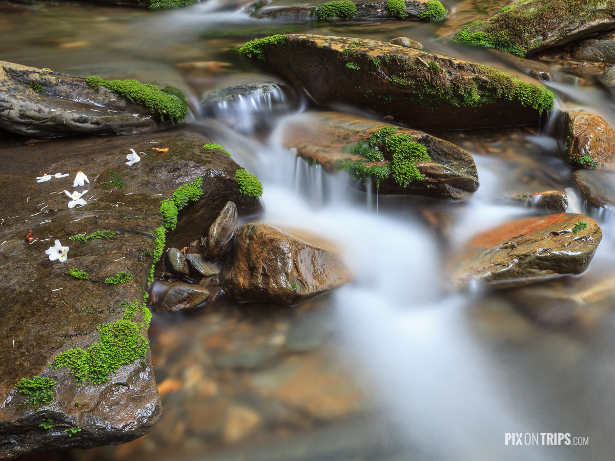 Creek along the Alum Cave Trail, Great Smoky Mountain National Park - Pix on Trips