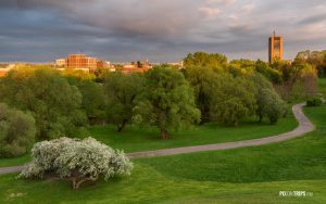 Urban Park at Sunset in Spring - Pix on Trips