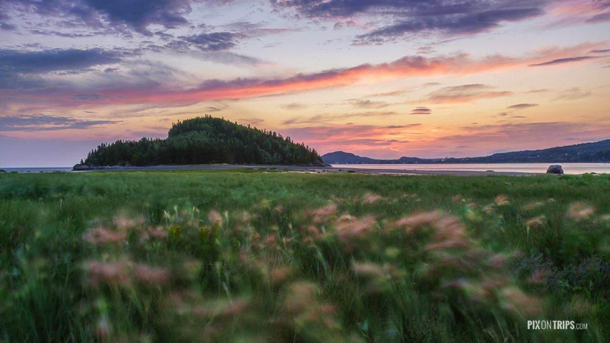 Parc National du Bic of Quebec at sunrise with blurry pink flowers in the foreground - Pix on Trips