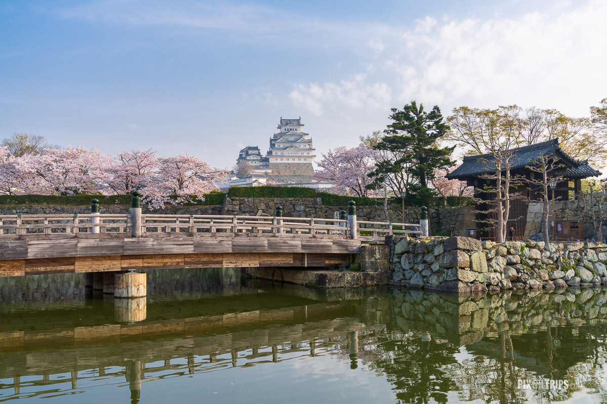 The Himeji Castle during cherry blossom blooming season - Pix on Trips