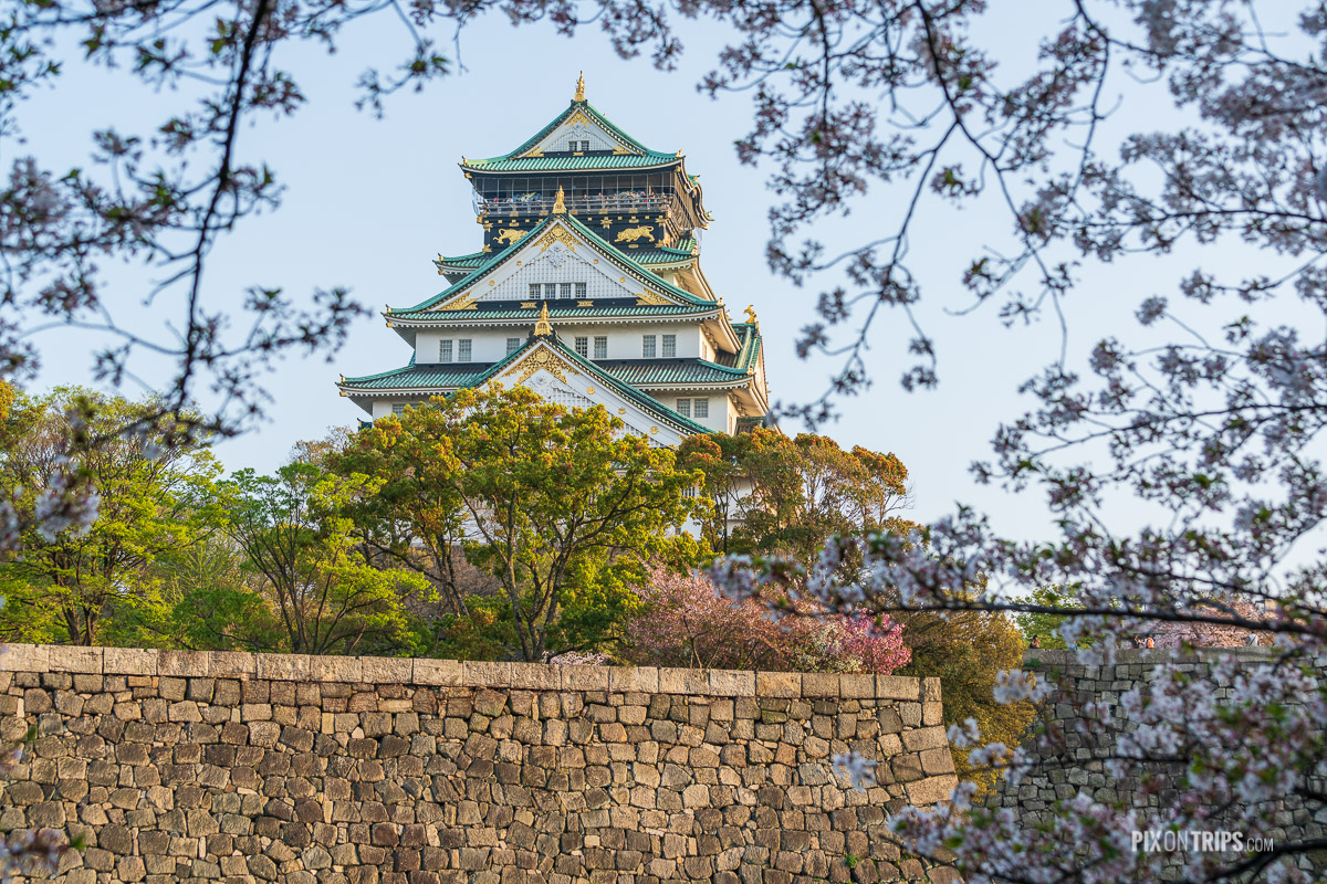 Close-up view of Osaka Castle during cherry blossom blooming season - Pix on Trips