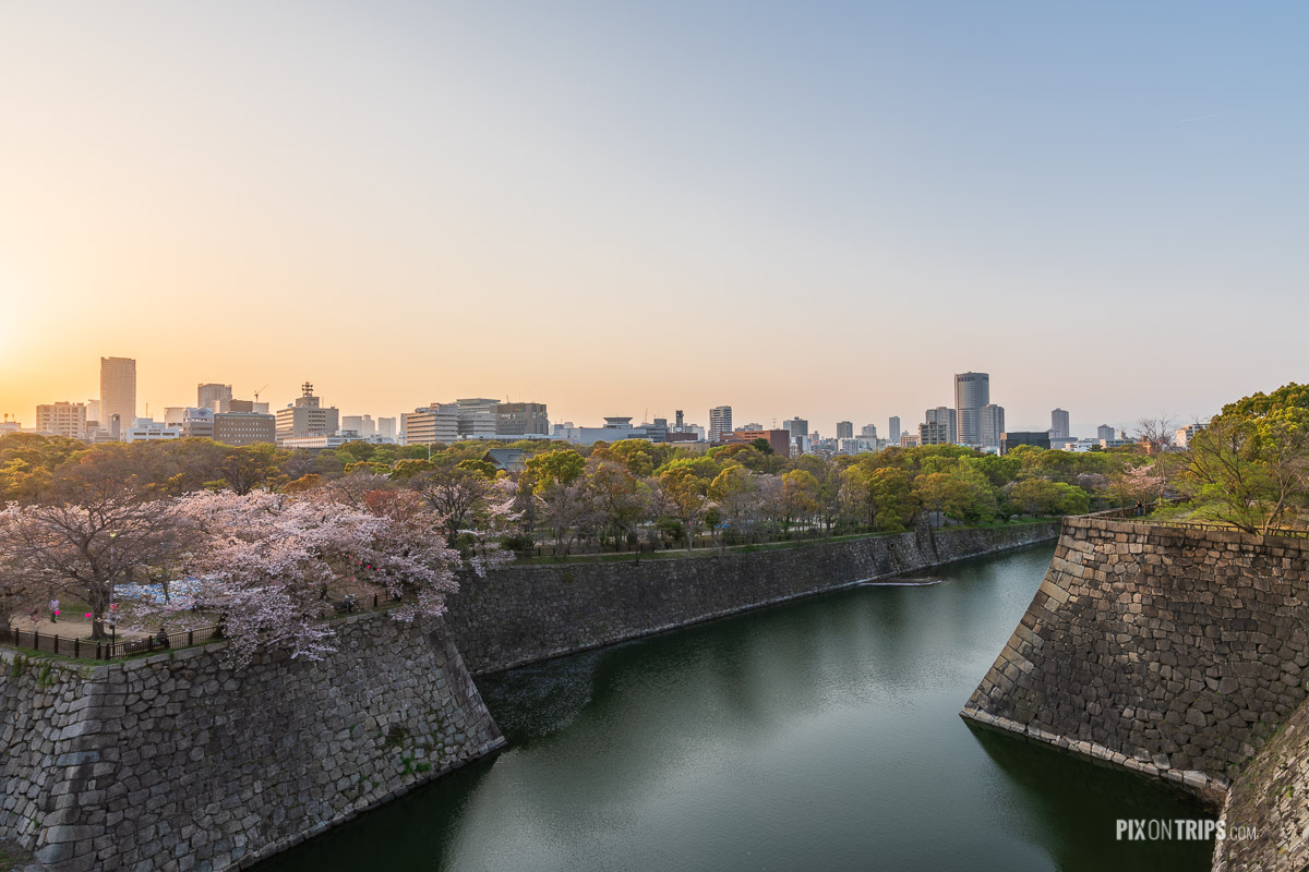 Panoramic view of Osaka Castle moat at sunset during cherry blossom blooming season - Pix on Trips