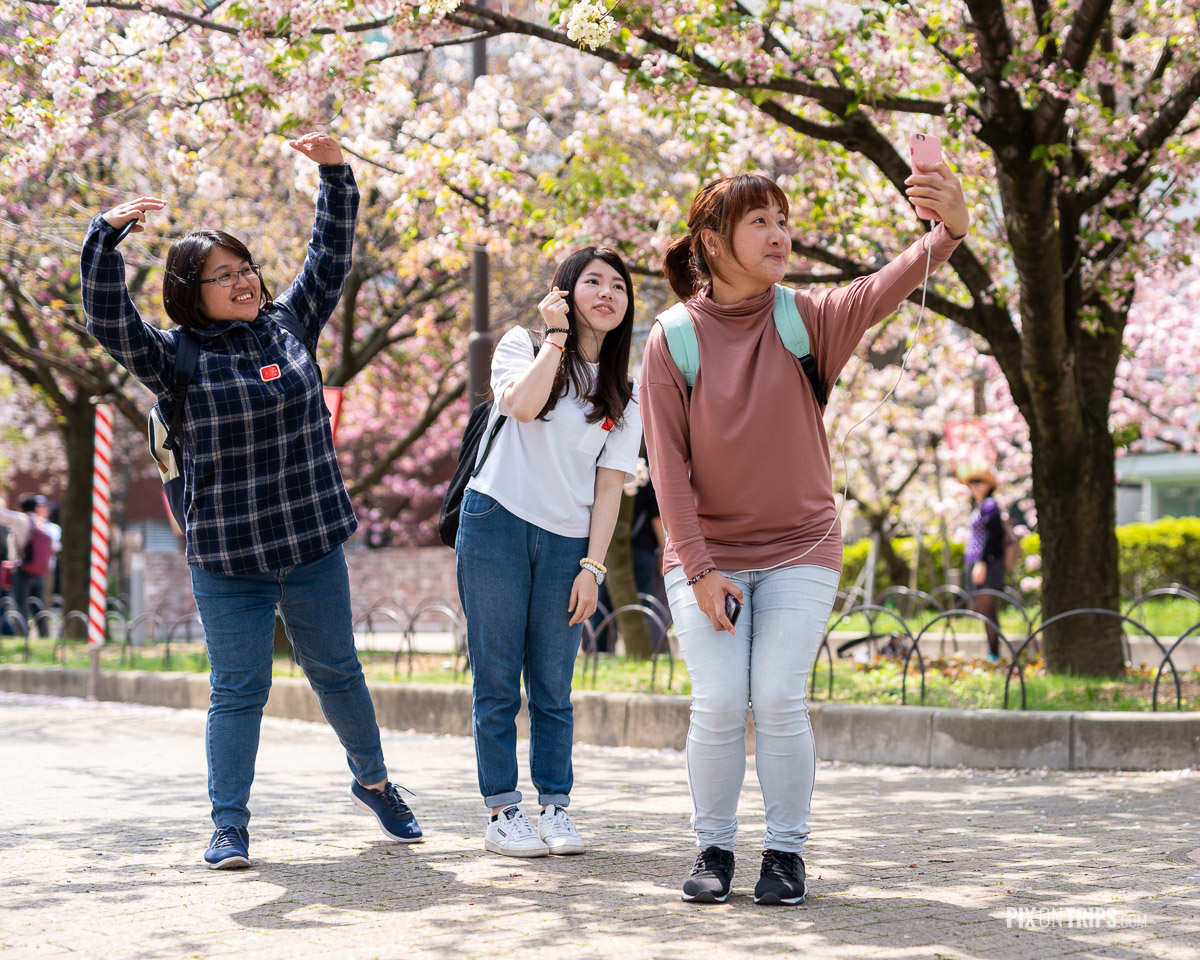 Girls pose for selfie in front of cherry blossom trees at Japan Mint Bureau, Osaka - Pix on Trips
