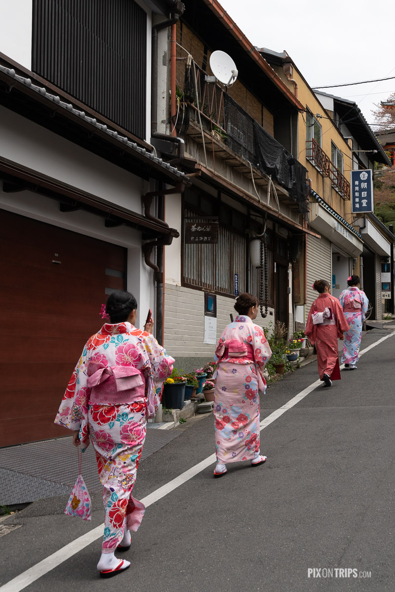 Women in Kimono walking in a historical district of Kyoto, Japan - Pix on Trips