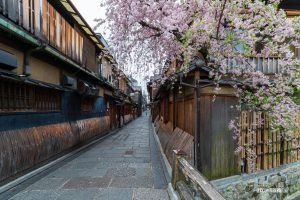 A street in the Gion District of Kyoto, Japan - Pix on Trips