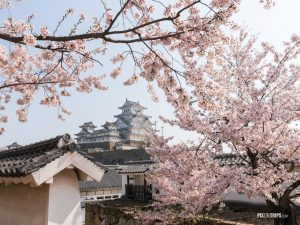 The Himeji Castle, Japan - Pix on Trips