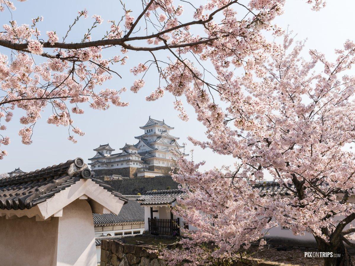 The Himeji Castle, Japan - Pix on Trips